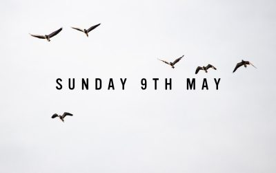Prep for Sunday 9th May 2021
