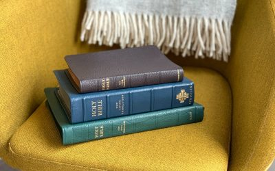 Which Bible Translation Do You Use?